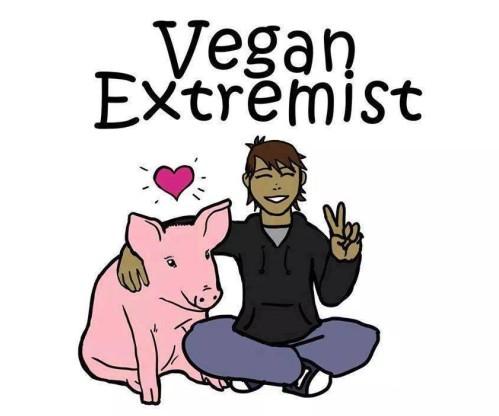 Veganer Extremist?
